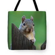 Squirrel Playing Peek A Boo Tote Bag