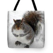 Squirrel Saying Feed Me Please At Niagara Falls Tote Bag