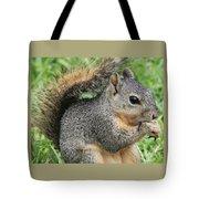 Squirrel Thief Tote Bag