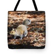 Squirrel Time Tote Bag