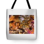 Squirrel To Bear Tote Bag