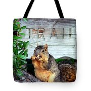 Squirrel Trail Tote Bag by Jeff Lowe
