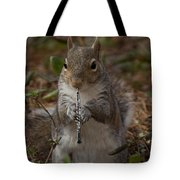Squirrel With His Obo Tote Bag