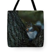 Squirrel With Nut Tote Bag