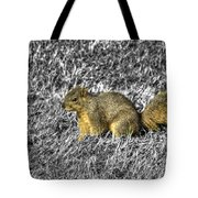 Squirrling Around Looking For Nuts Tote Bag