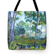 St. Andrew's Park Tote Bag