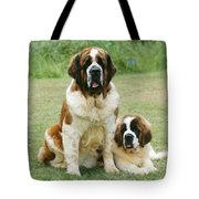 St Bernard With Puppy Tote Bag