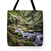 St Columba Falls Tote Bag