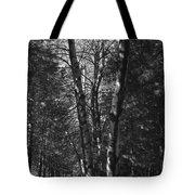 St-denis Woods 2 Tote Bag