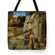 St Francis Of Assisi In The Desert Tote Bag