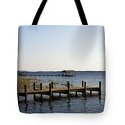 St Johns River Florida - Walk This Way Tote Bag