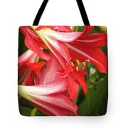 St. Joseph Lilies Tote Bag