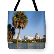 St Petersburg Florida From Mirror Lake Park Tote Bag
