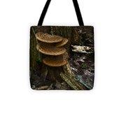 Stack Of Fungi Tote Bag