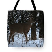 Stag In The Woods Tote Bag