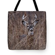 Stag Tote Bag