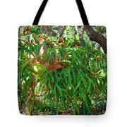 Staghorn Fern Tote Bag