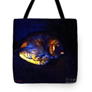 Stained Glass Snoozer Tote Bag