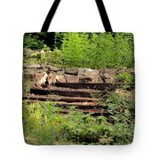 Staircase In The Forest Tote Bag