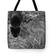 Stalking Cat Tote Bag