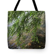 Stalking Trout Tote Bag