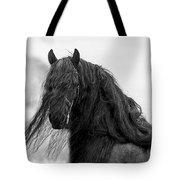 Stallion Beauty Tote Bag
