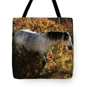 Stallion Of The Badlands Tote Bag