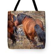 Stallions Gone Crazy Tote Bag