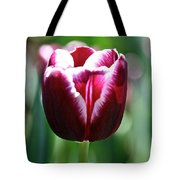 Stand And Shout Tote Bag