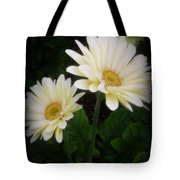 Stand By Me Gerber Daisy Tote Bag