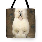 Standard Poodle Dog Tote Bag