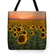 Standing At Attention Tote Bag