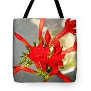 Standing Cypress Bouquet  Tote Bag