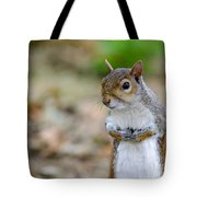 Standing Squirrel Tote Bag