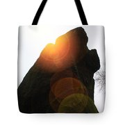 Standing Stone At Gardom's Edge Tote Bag