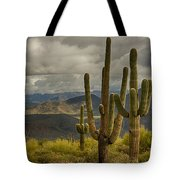 Standing Tall In The Sonoran Desert  Tote Bag
