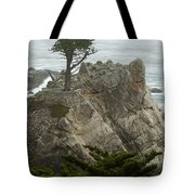 Standing Tall On The Rock Tote Bag