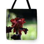Standout Stand Tall Stand Proud Tote Bag