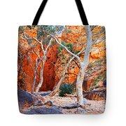 Stanley Chasm Tote Bag