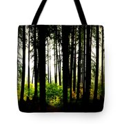 Stanley Park Triptych Right Tote Bag
