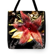Stapelia Grandiflora Starfish Cactus Tote Bag