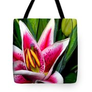 Star Gazer Lily Tote Bag