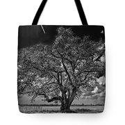 Stardom Bw Tote Bag