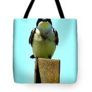 1 Swallow Never Makes A Summer Tote Bag