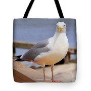 Stare Of A Seagull Tote Bag