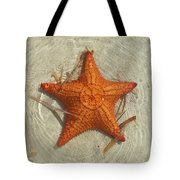 Starfish 1 Of Bottom Harbour Sound Tote Bag