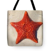 Starfish 4 Of Bottom Harbour Sound Tote Bag