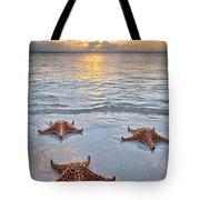 Starfish Beach Sunset Tote Bag