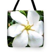 Starfish Gardenia  Tote Bag