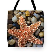 Starfish On Rocks Tote Bag